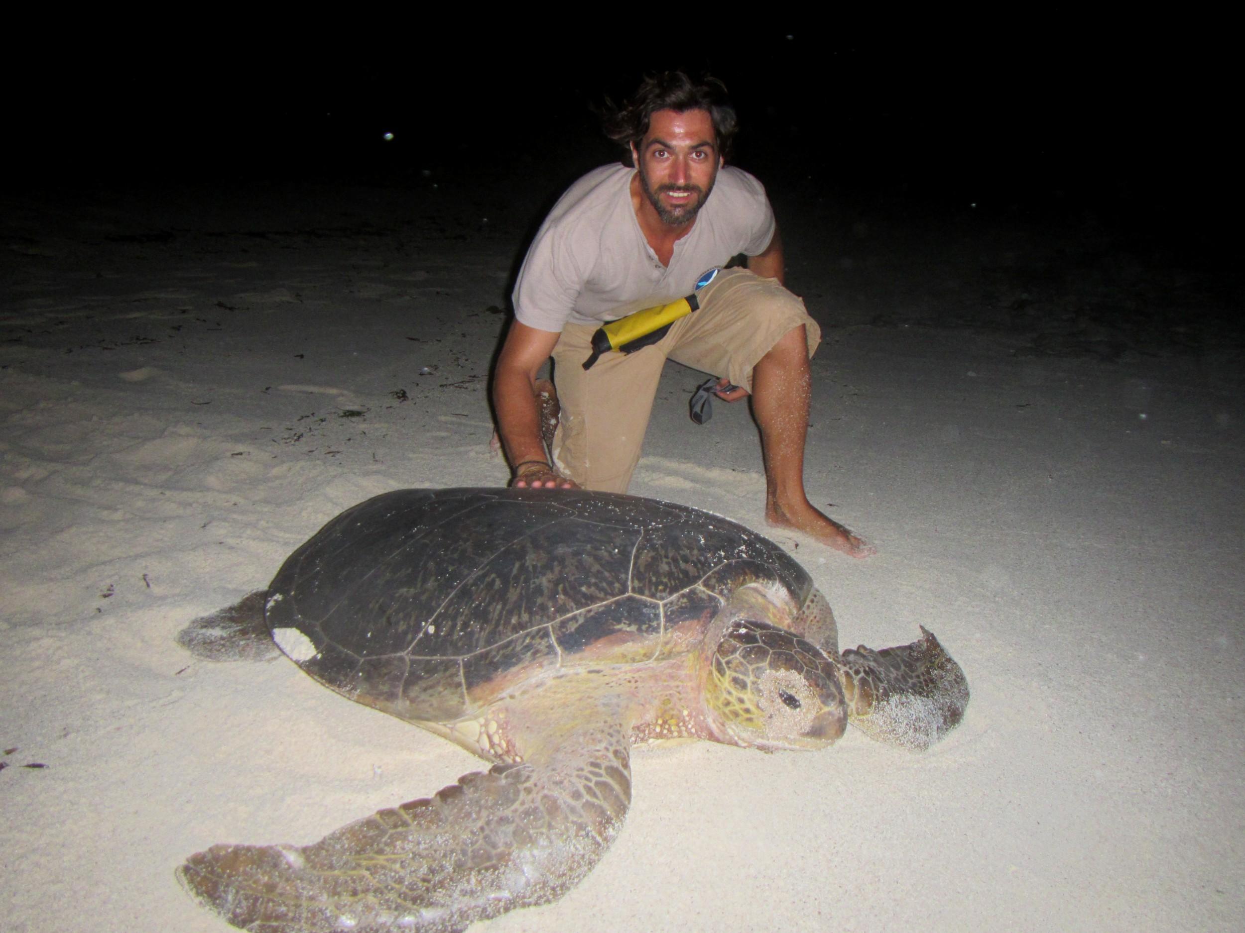 Pep avec une tortue femelle verte(1)