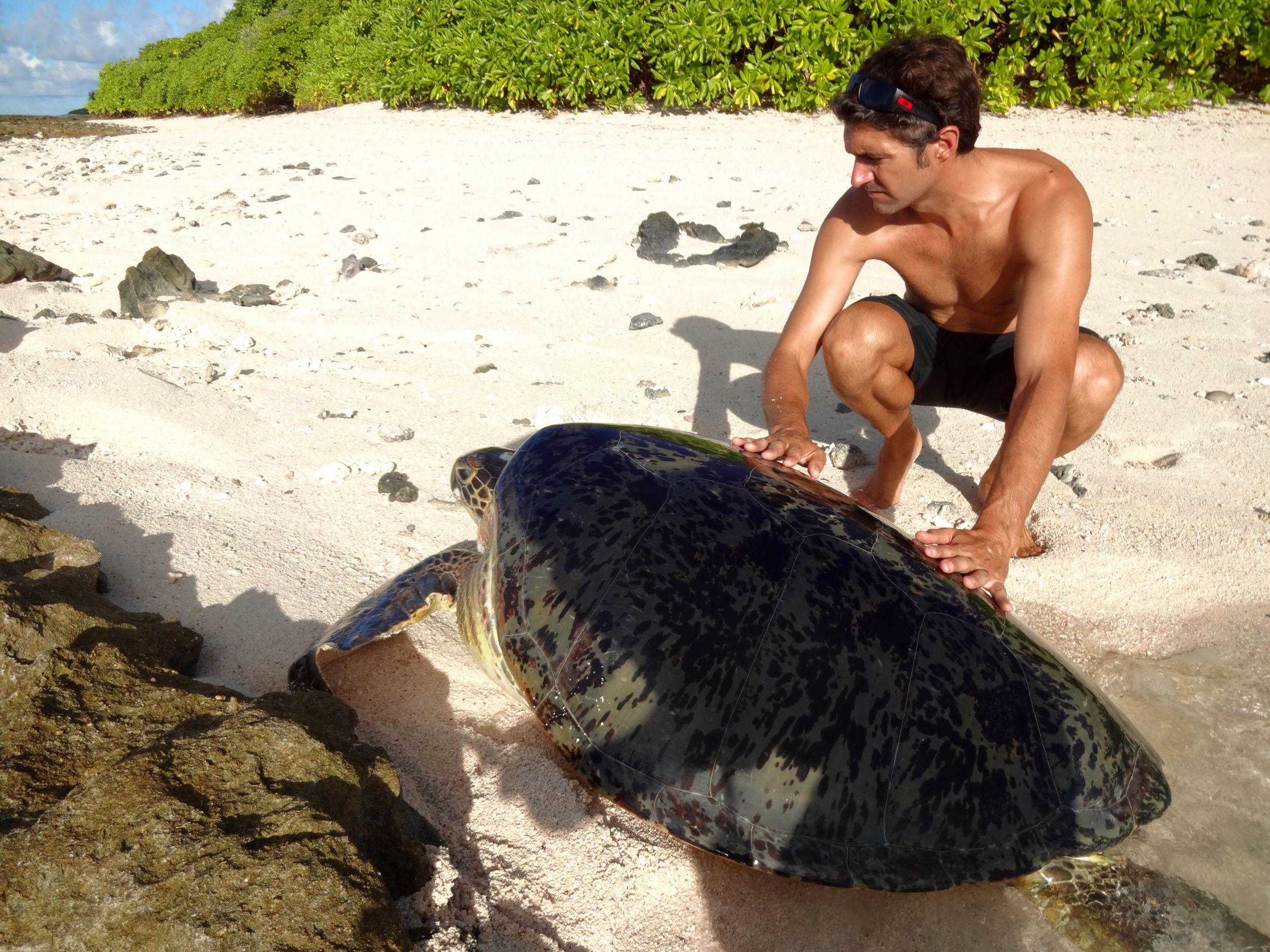 Pep avec une tortue femelle verte(2)
